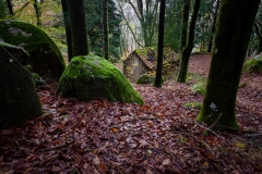 A casinha do bosque | The little house in the woods